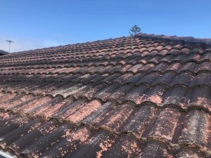 Cement Roof restored by The Roof Reviver in Langwarrin